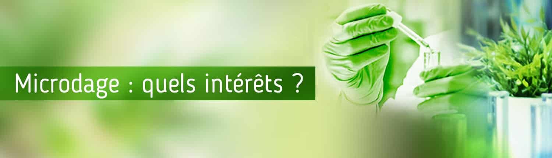 interets-microdosage-en-cbd