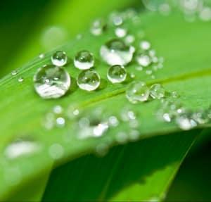 bulles-bioactif-eau
