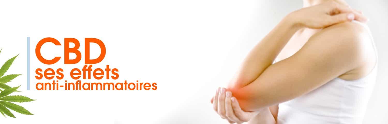 CBD effets et actions anti-inflammatoires