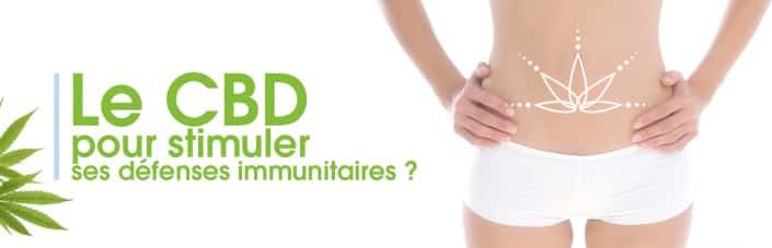 Cbd stimulant défenses Immunitaires