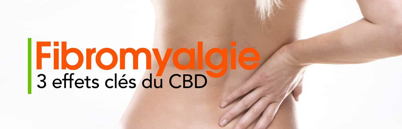 Fibromyalgie Effets Cbd